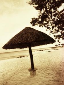 Palapa Umbrella on the Beach, Cancun, Mexico by Daniel J. Cox