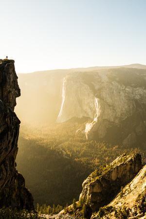 Standing Tall Yosemite National Park