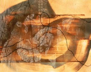 Abstract Image in Beige, Brown, and Black by Daniel Root