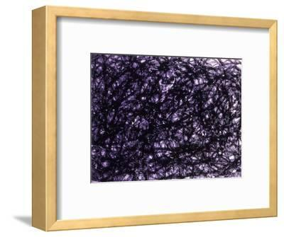 Abstract Image in Black and Purple