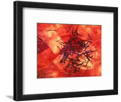 Abstract Image in Red and Black