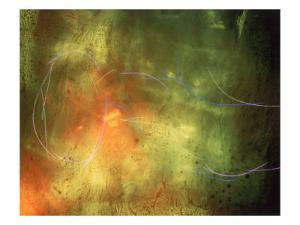 Abstract Image Yellow,Green, and Red by Daniel Root