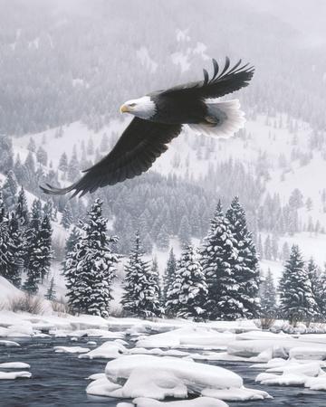 Free Flight (detail)