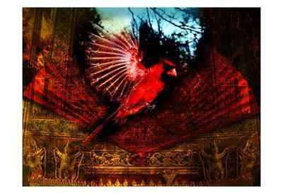 Red Cardinal Thai Temp
