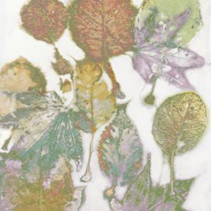Multi Colored Nature I by Danielle Carson