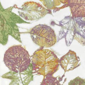 Multi Colored Nature II by Danielle Carson