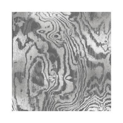 Silver Variations I