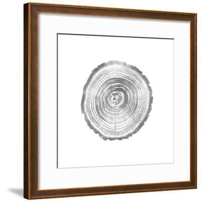 Timber Silver II