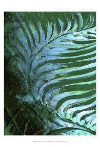 Emerald Feathering I by Danielle Harrington