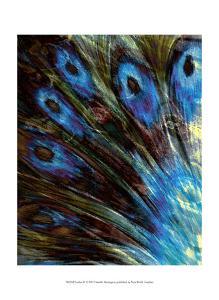 Feather II by Danielle Harrington