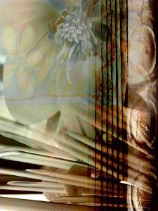 Relic Fan I by Danielle Harrington