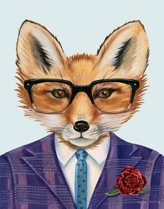 Mr Fox for President by Danielle Murray