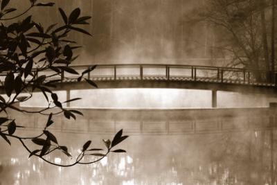 Callaway Garden Pond