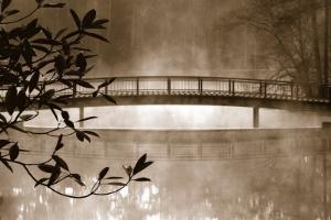 Callaway Garden Pond by Danita Delimont