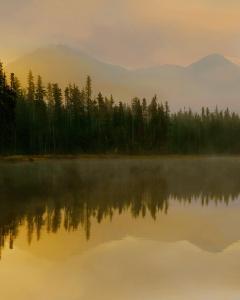 Twilight Reflection I by Danita Delimont