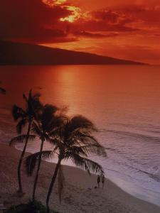 Aerial of Tropical Beach at Sunset, Maui, HI by Danny Daniels