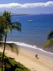 Aerial of Tropical Beach, Maui, HI by Danny Daniels