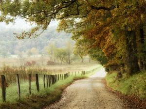 Autumn on a Country Road by Danny Head