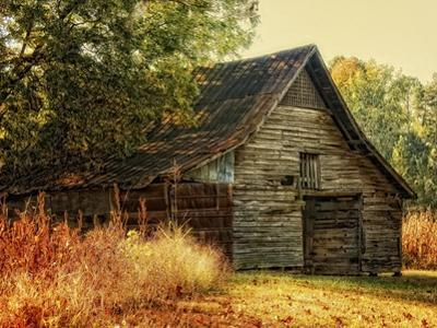 Barn Loft Memories by Danny Head