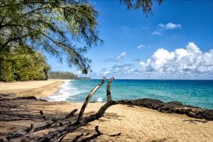 Lumahai Beach by Danny Head