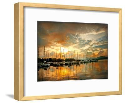 Marina Sunrise II