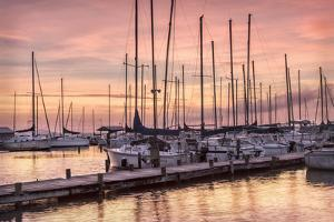Set to Sail by Danny Head