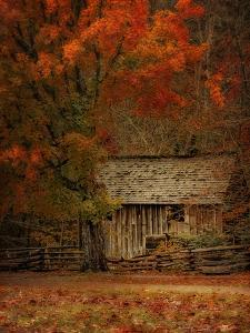 The Mill by Danny Head