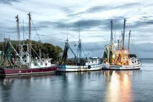 The Shrimping Fleet by Danny Head