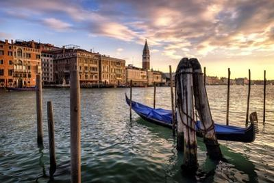 Venice Morning by Danny Head
