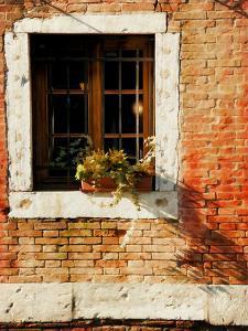 Venice Snapshots V by Danny Head