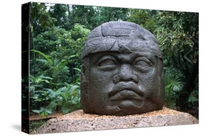 Giant Olmec Head at La Venta Park