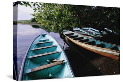Tour Boats Moored in Ventanilla Lagoon