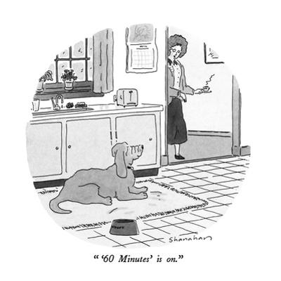 """""""'60 Minutes' is on."""" - New Yorker Cartoon by Danny Shanahan"""
