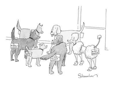 A group of dogs in a circle; they all have nametags attached to their rear… - New Yorker Cartoon by Danny Shanahan