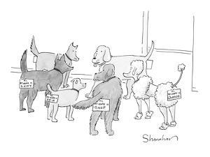 A group of dogs in a circle; they all have nametags attached to their rear? - New Yorker Cartoon by Danny Shanahan
