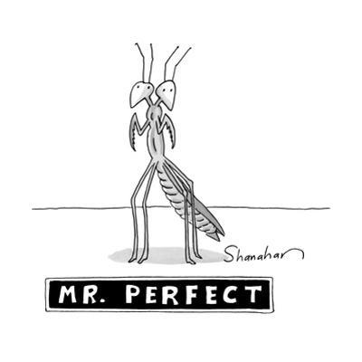 """A two headed mantis is standing and under him there is a box reading """"Mr. ? - New Yorker Cartoon by Danny Shanahan"""