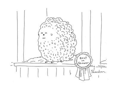 Best in Shower - Cartoon by Danny Shanahan
