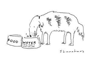 "Dog drinking out of bowl labeled ""Water, with just a hint of lime"". - New Yorker Cartoon by Danny Shanahan"