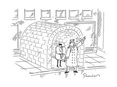 Doorman calls a cab from an igloo. - Cartoon by Danny Shanahan