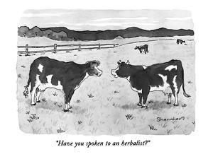 """Have you spoken to an herbalist?"" - New Yorker Cartoon by Danny Shanahan"
