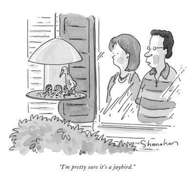 """I'm pretty sure it's a jaybird."" - New Yorker Cartoon by Danny Shanahan"