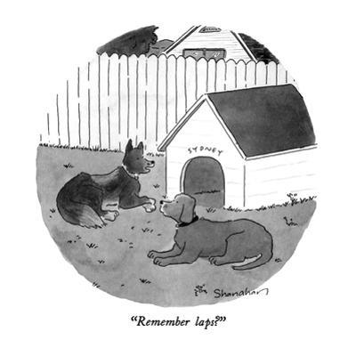 """""""Remember laps?"""" - New Yorker Cartoon by Danny Shanahan"""