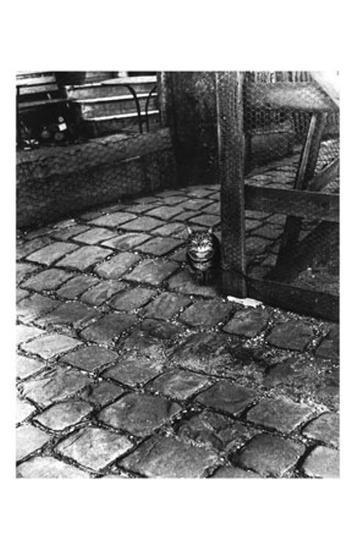 Dans la Cours, 255 Avenue Alesia, c.1947-Izis-Art Print