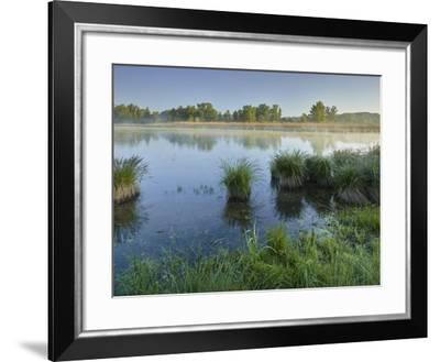 Danube Meadows, Austria-Rainer Mirau-Framed Photographic Print