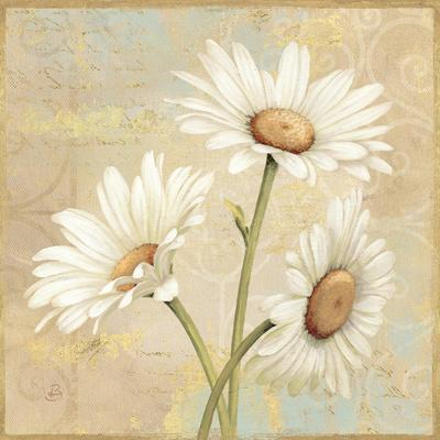 Beautiful Daisies II
