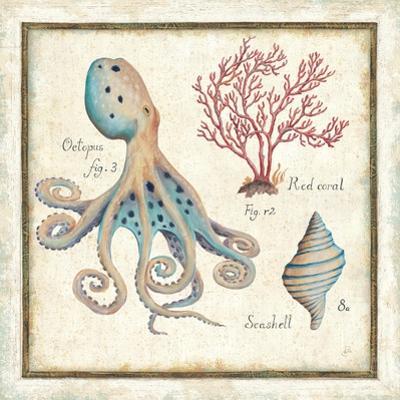 Oceanography I by Daphne Brissonnet
