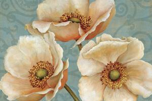 Windflower by Daphne Brissonnet