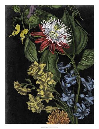 https://imgc.artprintimages.com/img/print/dark-floral-iii_u-l-f8p2rm0.jpg?p=0