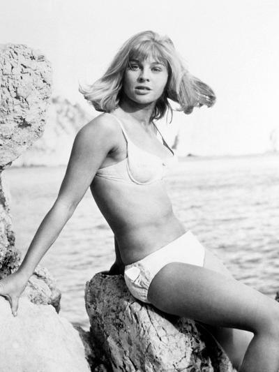 Darling, 1965--Photographic Print