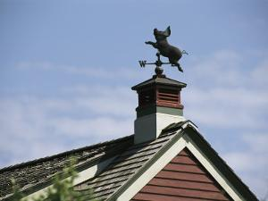 A Flying Pig Weather Vane on a Roof Top by Darlyne A. Murawski